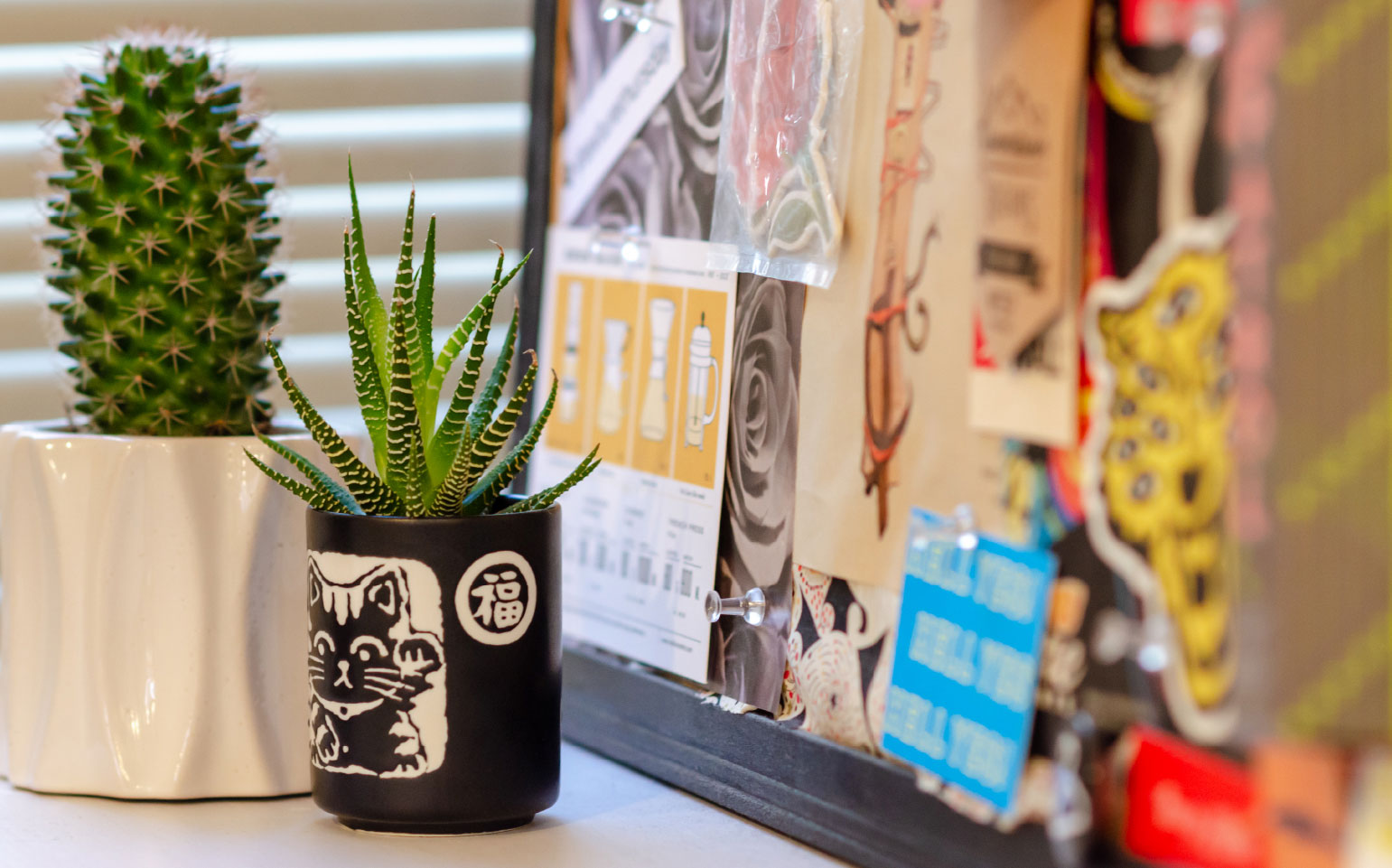 Office plants and a pin up board