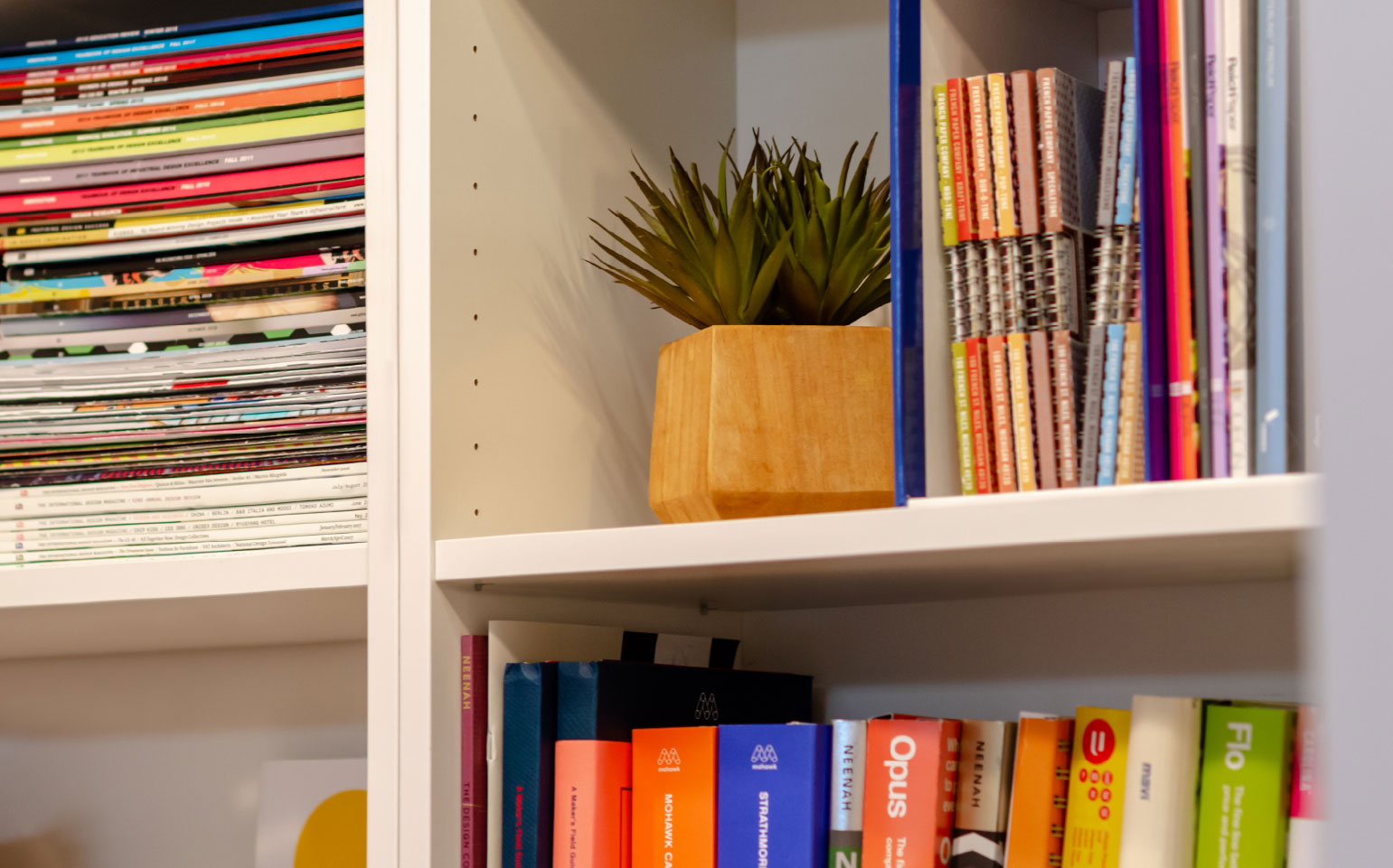 Library with books, magazines and a plant