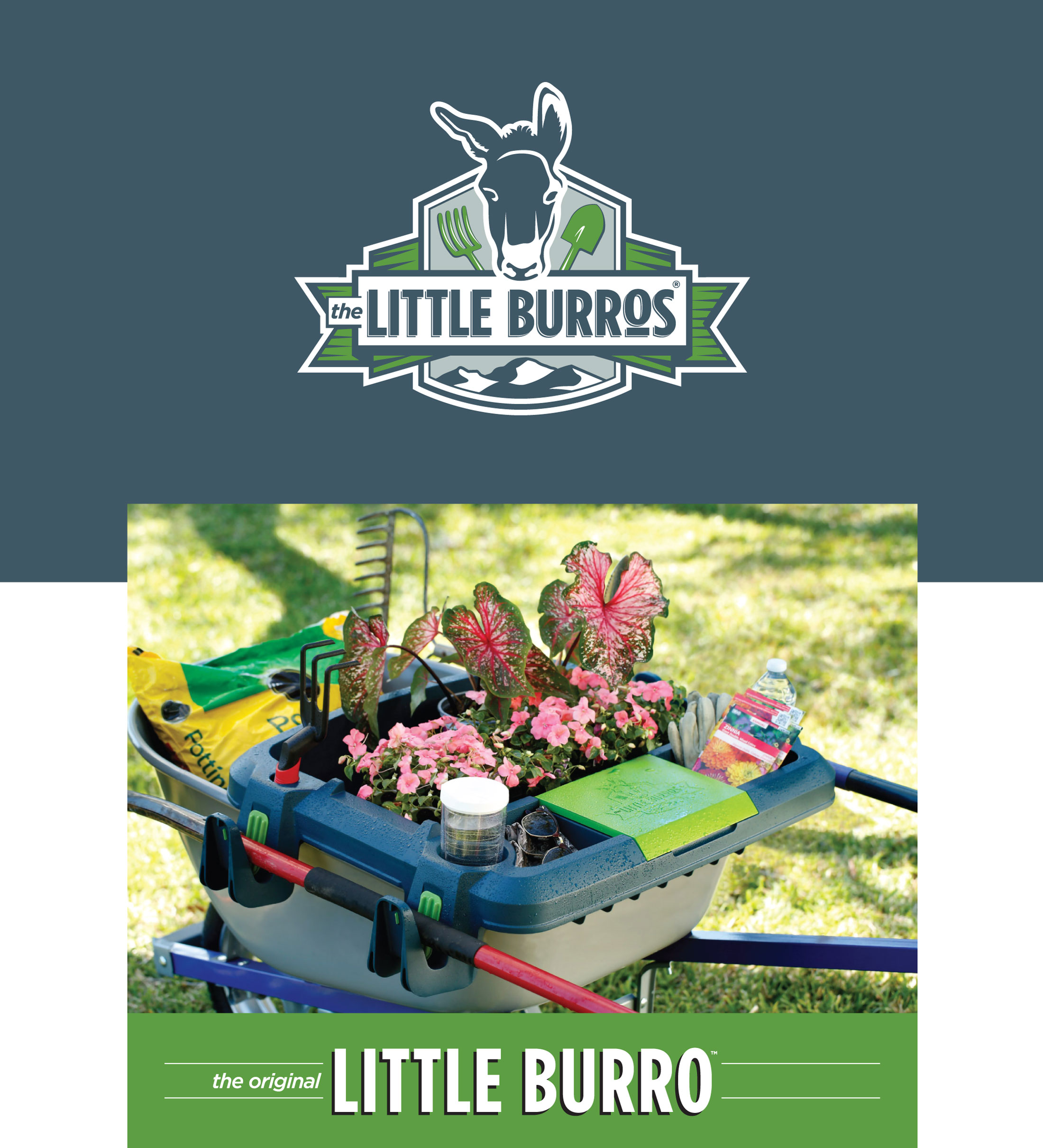 Little Burros logos and photography art direction