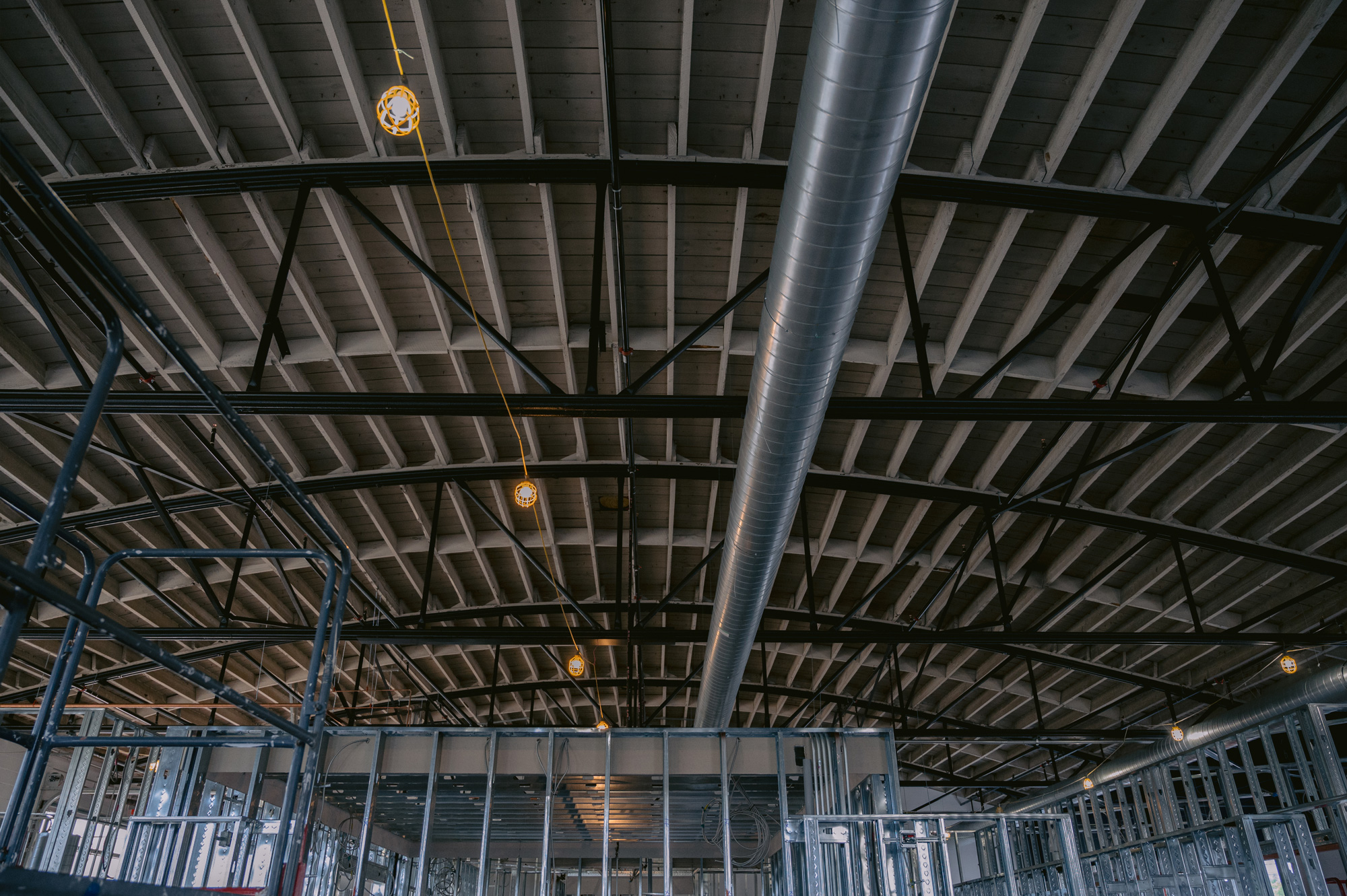 Bow truss ceiling of BOLTGROUP's new office